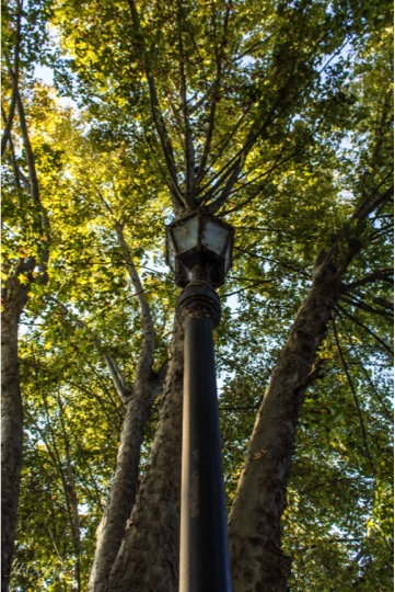 Tour in Isla de Maipo. Lantern in Santelices avenue. Santiago Chile