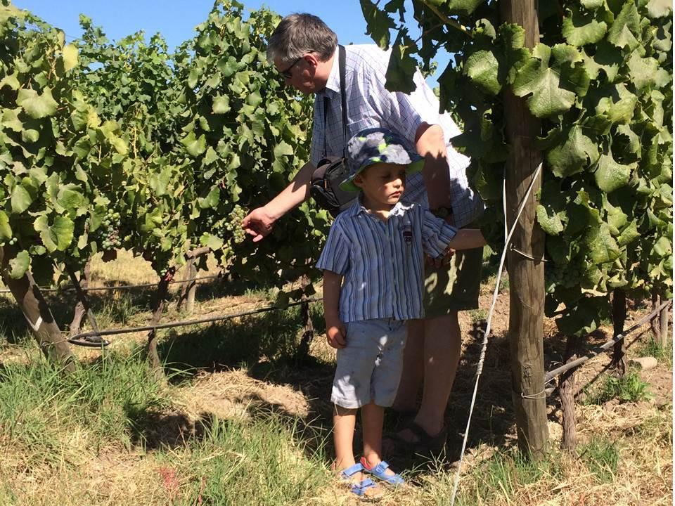 Book family outing through the Maipo Valley