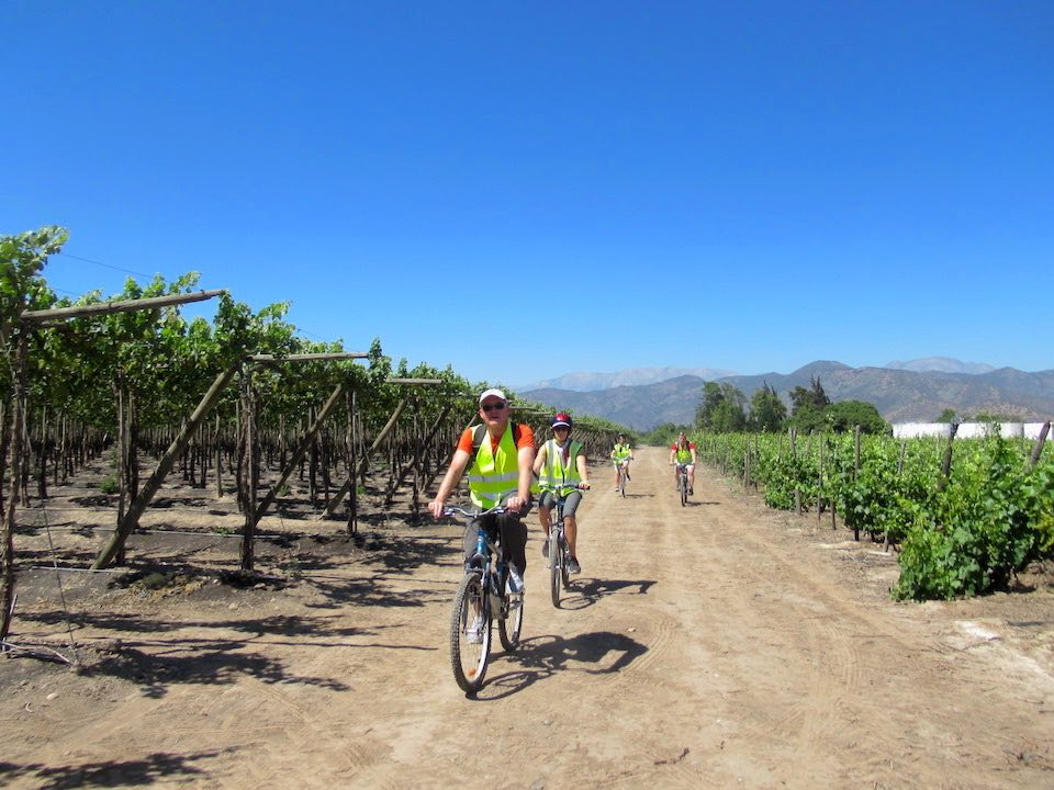 Las Heras wine bike tour